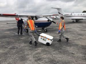Transferring Kits To Plane Todd