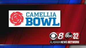Camelliabowl