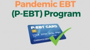 P Ebt Card Infographic